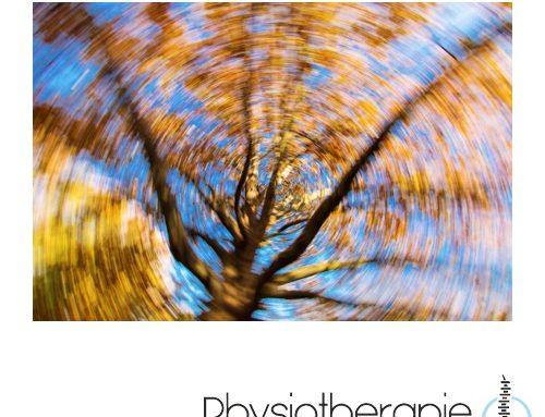Schwindel- und Vestibulartherapie