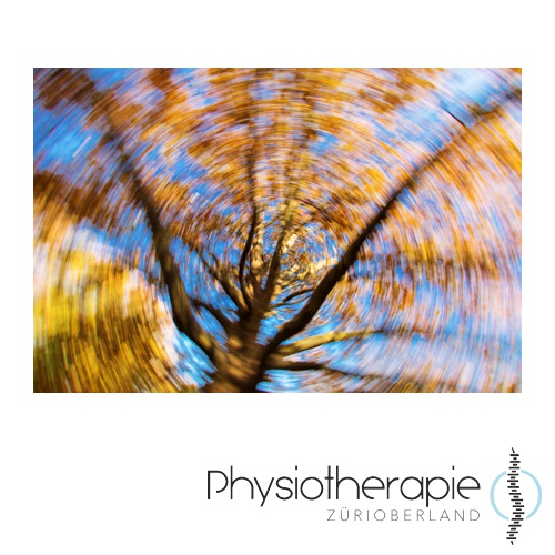 Physiotherapie ZüriOberland AG Schwindel- Vestibulartherapie